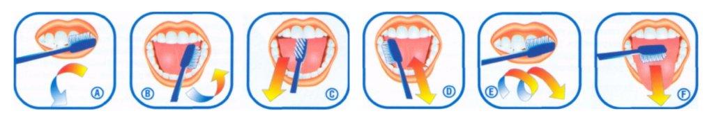 pravila_chistki_zubov